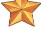 Медаль «Золотая Звезда» Героя Российской Федерации  (Госнаграда РФ)