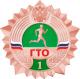 Значки ГТО 2015